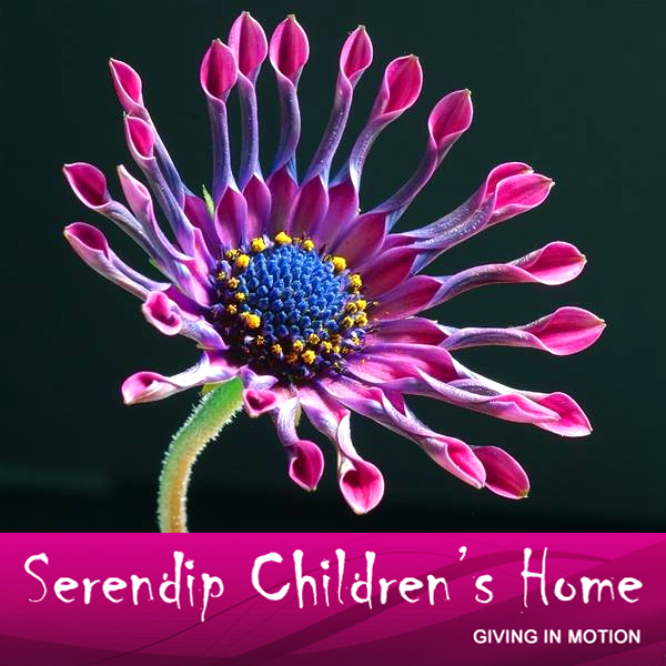 Serendip Children's Home